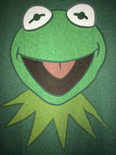 Kermit The Frog Large T-Shirt Green Disney The Muppets