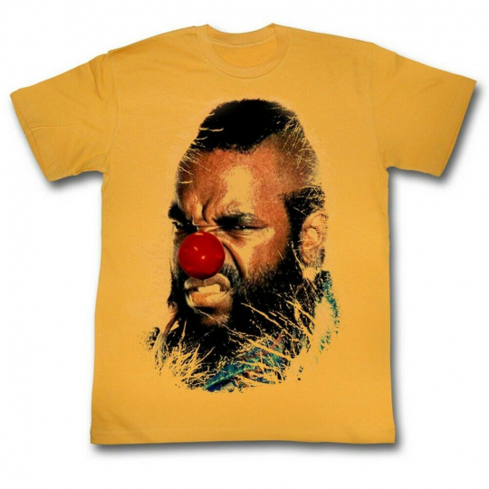 Mr. T Why Must I Adult T-Shirt Tee