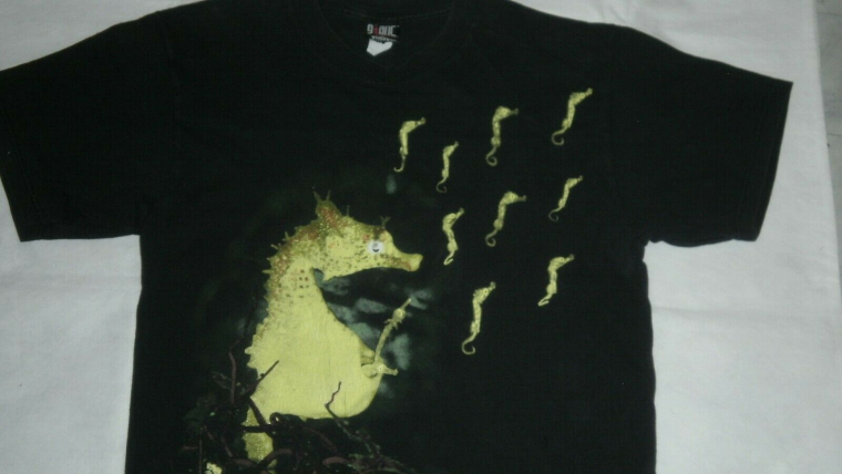 NIRVANA Seahorse Vintage T shirt Original 1993 L GIANT by Tultex Glows in Dark